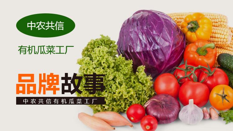 中农共信品牌发展史