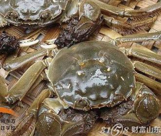 怎么判断螃蟹是否新鲜?辨别方法是怎么样的?