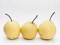 梨和枸杞能不能一起吃?