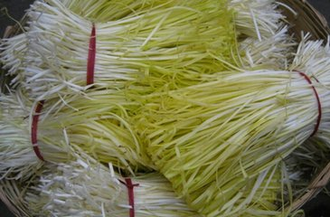 韭黄水泥筒制作