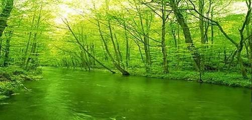 高石梯森林公园景区