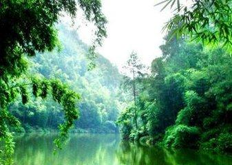 四川省高石梯森林公园景观