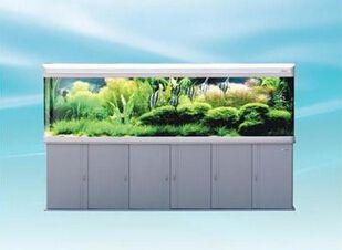 森森鱼缸图片 教你怎么挑选鱼缸图片