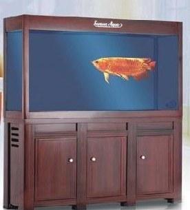 森森鱼缸报价是多少 最实惠的加盟项目图片