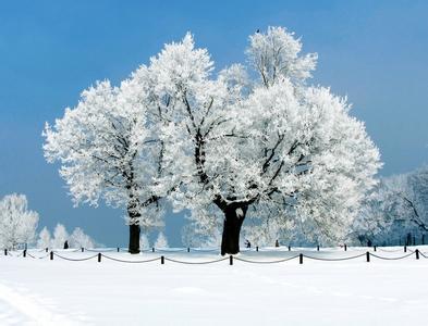 描写春天景物的诗句; 01-22 表达友情的经典诗句; 01-22 思念家乡亲人