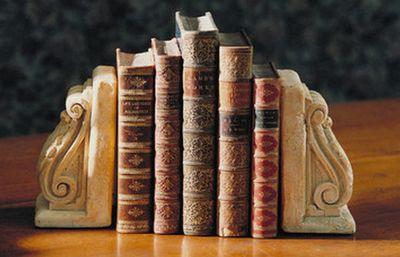 ...《繁星春水》、《鲁滨逊飘流记》、《格利佛游记》、《童年
