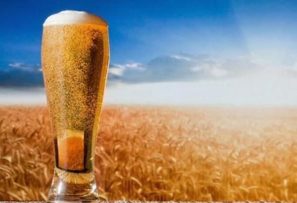 夜场啤酒酒加盟代理 商机无限