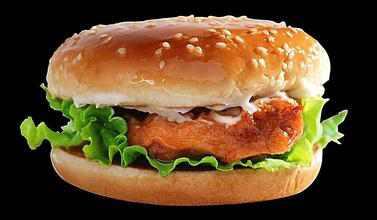 餐饮招商加盟 投资汉堡