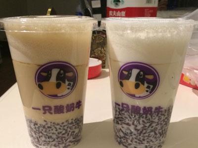 一只酸奶牛加盟店一月盈利多少,一只酸奶牛加盟投资多少钱