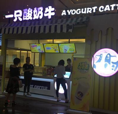一只酸奶牛在武汉哪里?联系的方式有哪些