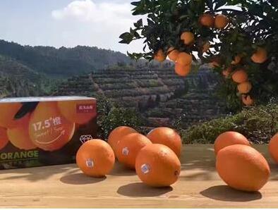 农夫山泉创新技术破解世界脐橙榨汁难题