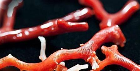 红珊瑚珠宝的真假识别以及正确的保养方法