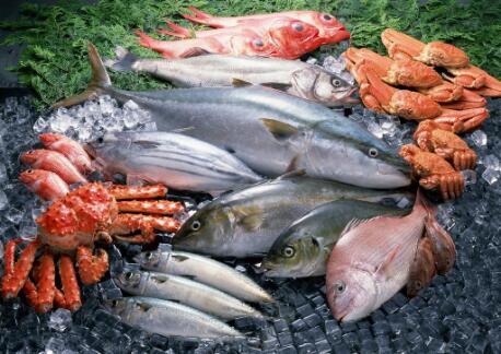 海鲜俤水产加盟小本投资利润高