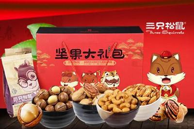 三只松鼠食品·项目介绍