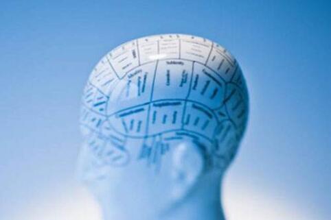 新思维全脑教育加盟好品牌好发展