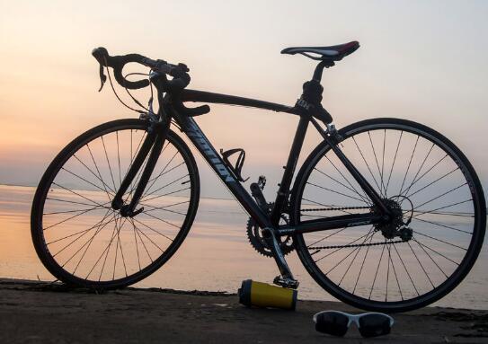 飞轮威尔自行车
