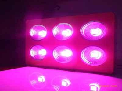 友鸿达LED灯加盟总部全面扶持