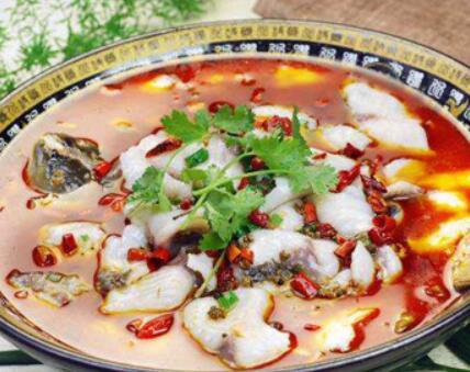 鱼乐煮义啵啵鱼加盟条件有哪些