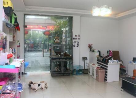 大嘴狗宠物店在区县加盟有没有前途