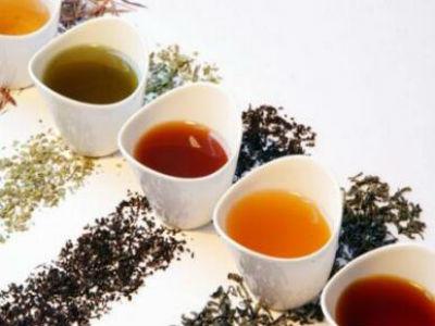 加盟序纳相遇识茶有什么条件