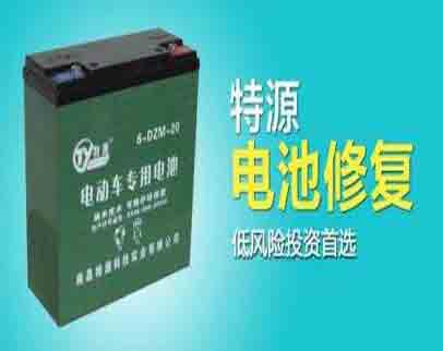 加盟特源电池修复市场销量好不好