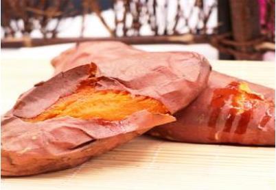 泉城烤薯总投入要多少