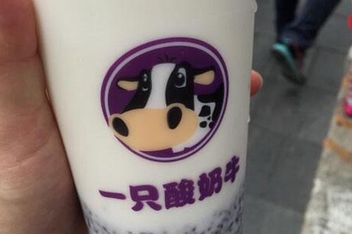 乡镇开一只酸奶牛实体店要多少钱 加盟费是多少