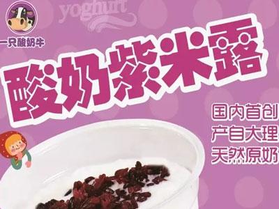 好吃的品牌受到顾客喜欢 一只酸奶牛就不错