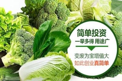 有机蔬菜如何打开销路