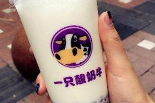 一只酸奶牛 奶茶新潮流