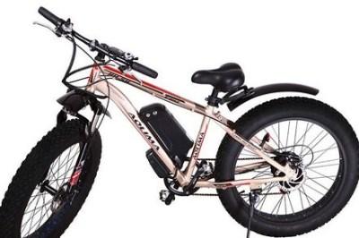 开个奥力玛智能电单车专卖店要多少钱
