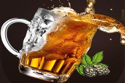 圣伯纯精酿鲜啤投资价位是多少