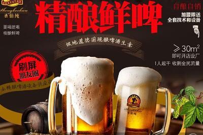 圣伯纯精酿鲜啤加盟店费用多少钱