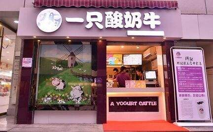 开一家小型的一只酸奶牛店需要多少* 加盟包括了哪些费用
