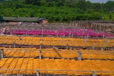 北京农村创业好的项目有哪些呢