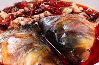 十八梯蛙队长美蛙鱼头加盟费是多少 加盟开店简单吗