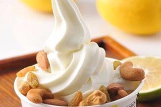 国内卖的比较*的冻酸奶是哪个牌子的 臻好时****