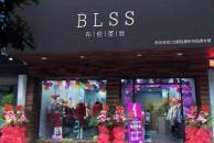 BLSS布倫圣絲女裝有哪些加盟優勢 加盟總共要投資多少錢