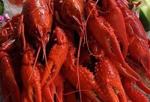 现在海鲜焖饭生意怎么样 2019加盟条件是什么