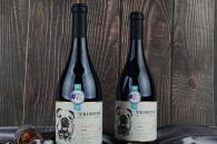 开家悠酒汇全球购进口葡萄酒前景怎么样 一年能赚多少