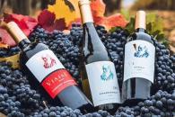 悠酒汇全球购进口葡萄酒合作有什么优势