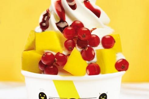 臻好时冻酸奶经营范围 臻好时冻酸奶开店支持