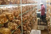 中盛永基食用菌在全国有多少加盟 有区域限制吗