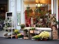 开花店开在什么位置比较好