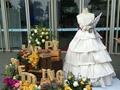 杭州新人举行低碳婚礼