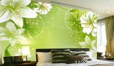 变的家装需求,使得丽彩墙体                    加盟 丽彩墙体彩绘机