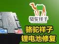 骆驼祥子锂电池租赁站 前店后厂赚钱快