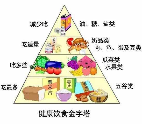 人体所需要营养素,归纳起来可分为六大类:即蛋白质、脂肪、糖类、维生素、矿物质和水。它们在人体的生理功能为:构成人体细胞和组织、器官,供给人体生长发育、组织更新所需要的材料;供给人体生理活动、社会劳动所需的能量,维持体温;维持和调节人体器官的生理功能和代谢反应,使人体各部分工作保持正常运行。 我们需要了解各种营养素的生理作用和保健功能,也需要了解各种食物的性味、所含的营养素以及它们在医疗保健方面的作用,再通过科学的饮食结构,就会促进人体发育更加健壮,这就是我们要了解营养素基本知识的主要目的。
