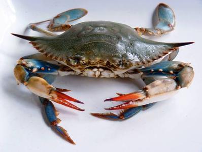 机械螃蟹结构原理动态图