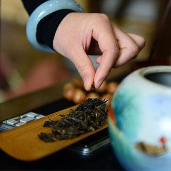 """京城""""茶女郎"""".普洱茶"""